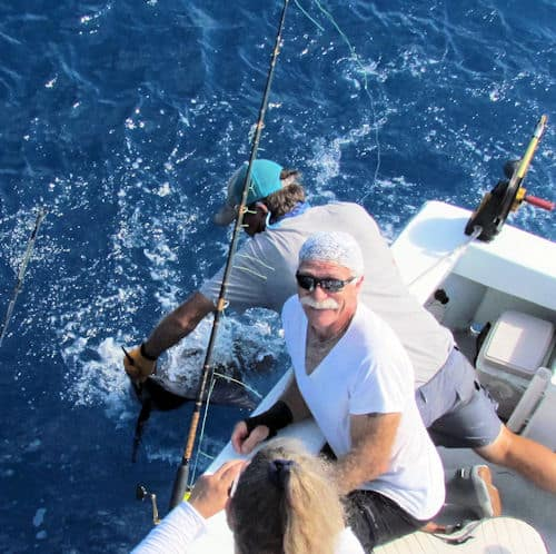 Sailfish released in Key West fishing with Southbound Sportfishing