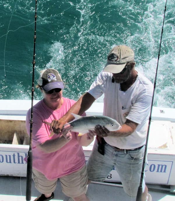 Cravalle Jack provide great action in the Gulf of Mexico
