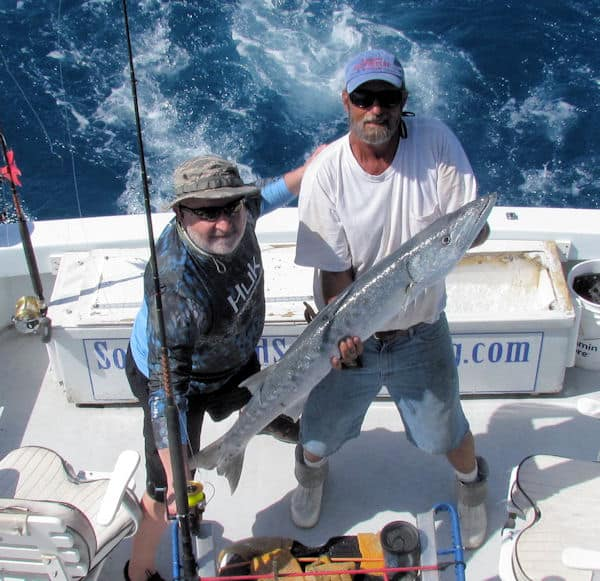 Big Barracuda caught and released in Key West fishing on charter boat