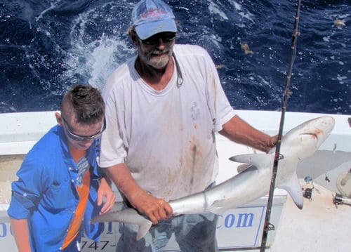 Silky Shark caught fishing offshore on The Southbound from Key West, Florida