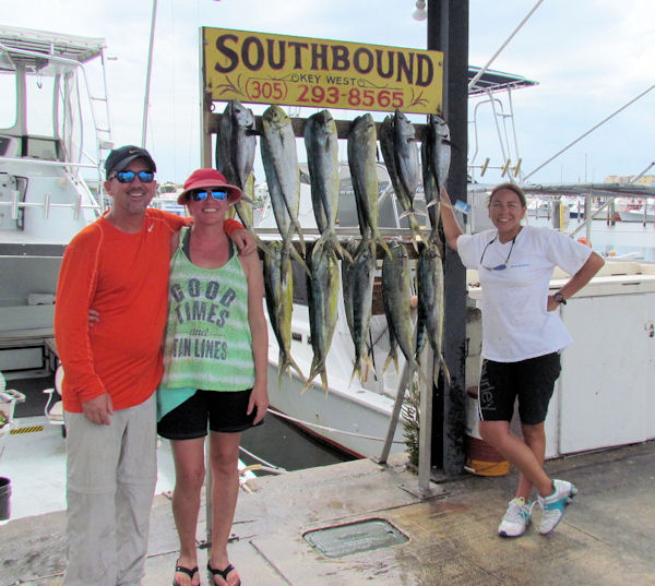 Schoolie Dolphin caught in Key West fishing on charter boat Southbound
