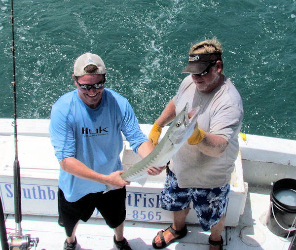 Barracuda caught and released in Key West fishing on charter boat Soutbound