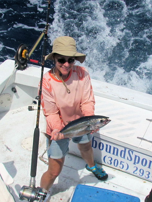Blackfin Tuna Caught in Key West fishing on charter Boat Southbound