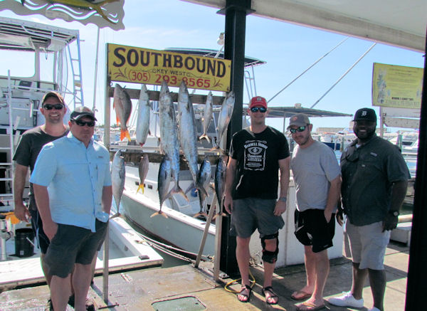 Kingfish, Mackrel, Bonitos and a couple snapper caught in Key West fishing on charter boat Southbound