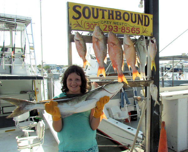 Cobia  caught in Key West fishing on charter boat Southbound