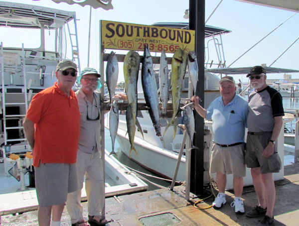 Bonitos, a Wahoo and a Nice Dolphin caught in Key West fishing on charter boat Southbound