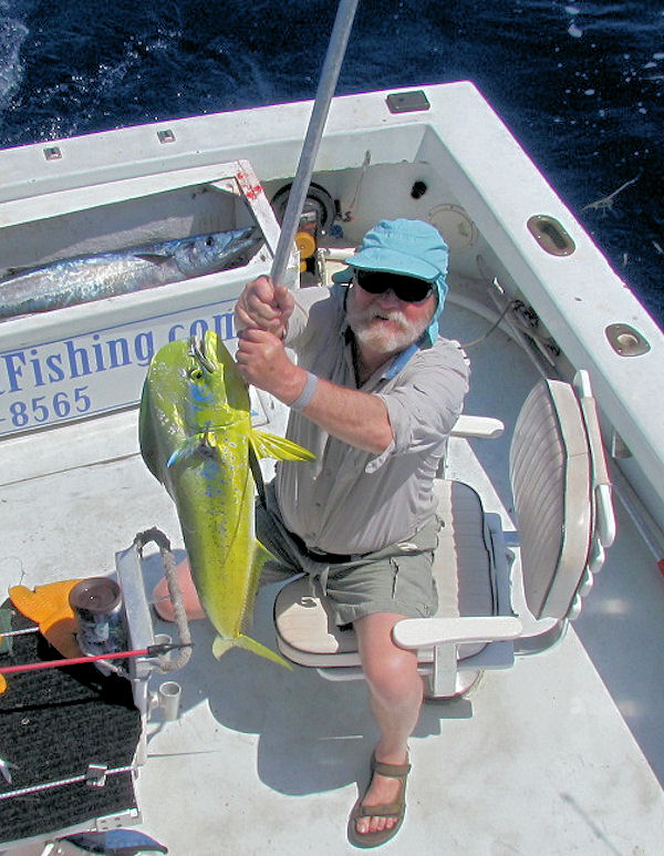 Nice Dolphin caught in Key West fishing on charter boat Southbound