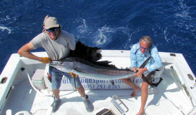 Sailfish caught and released in Key West fishing on charter boat Southbound