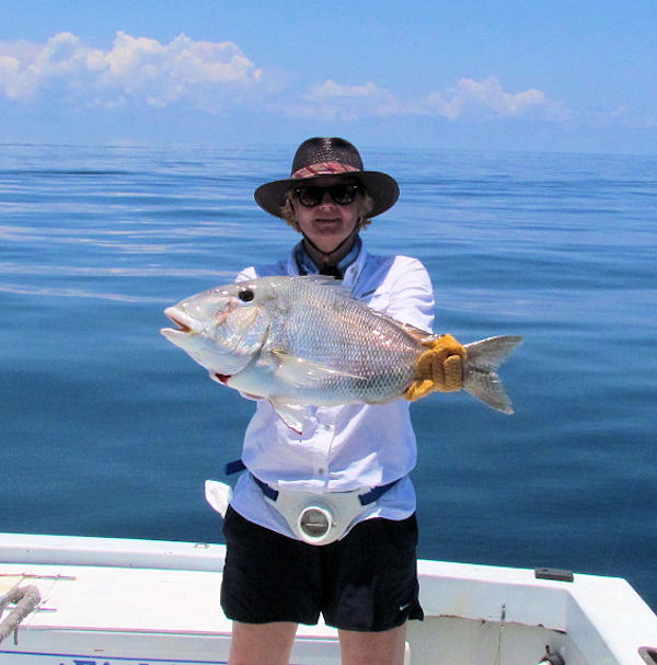 10 lb Porgy  caught in Key West fishing on charter boat Southbound