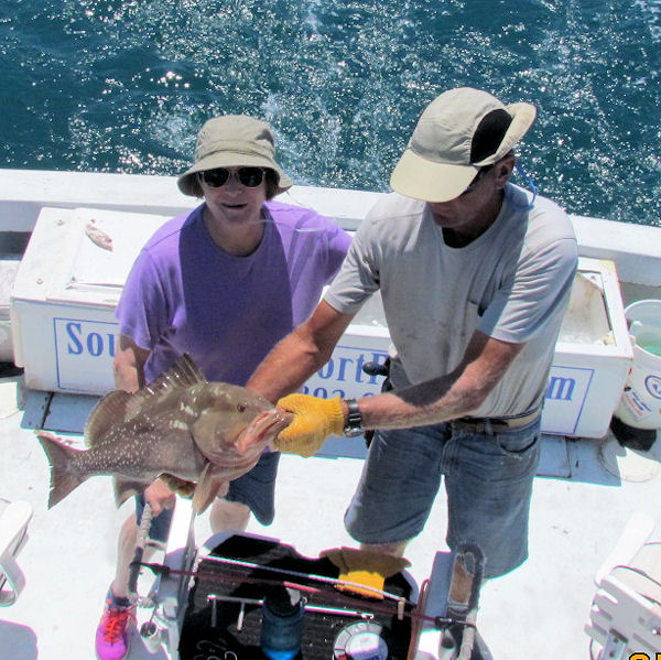 Keeper Red Grouper caught in Key West fishing on charter boat Southbound