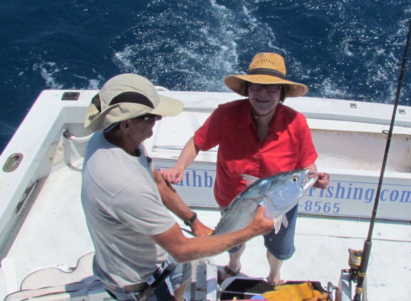 Bonito caught and released in Key West fishing on charter boat Southbound