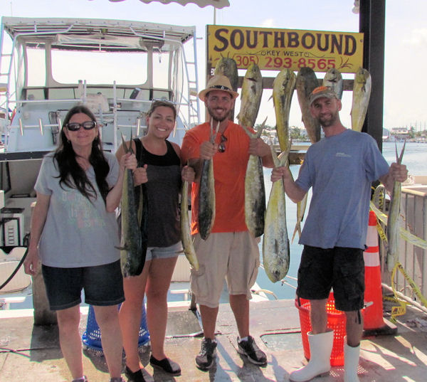 Good catch of  Dolphin caught in Key West fishing on charter boat Southbound