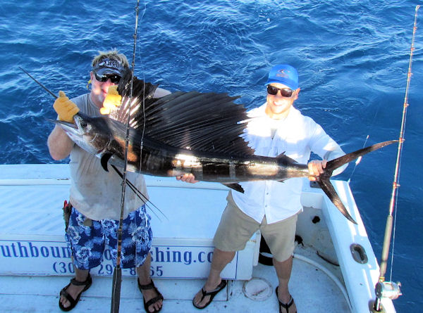 Sailfish caught and released in Key West fishing on charter boat Soutbound