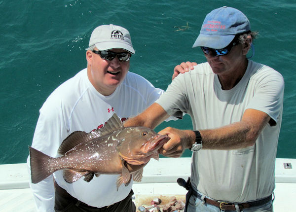 Red Grouper caught and released in Key West fishing on charter boat Southbound