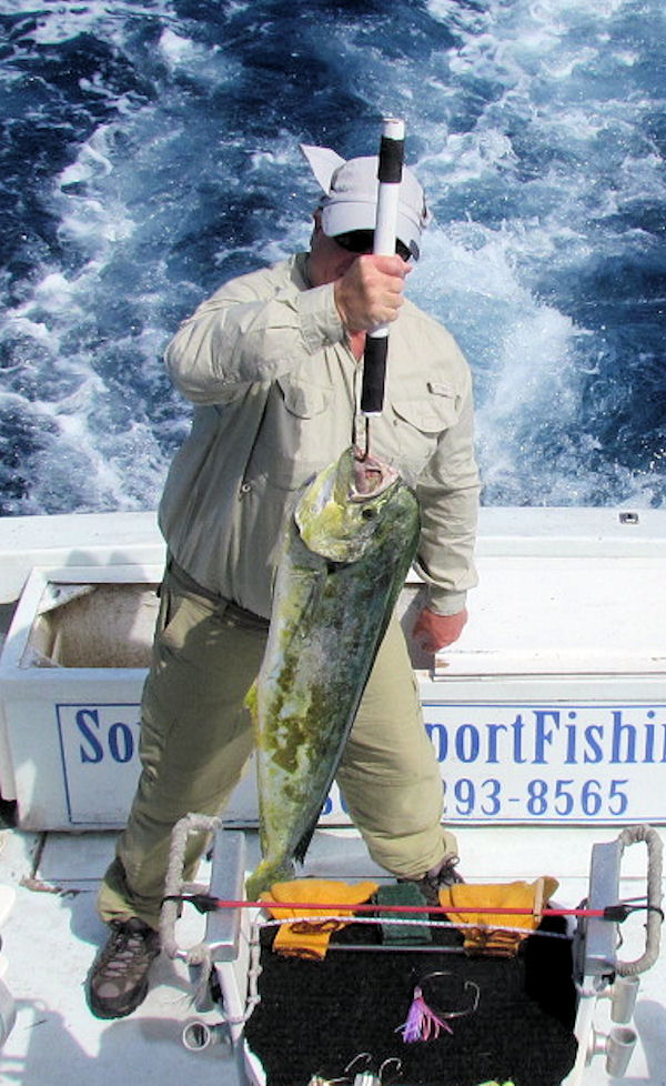 20 lb Dolphincaught in Key West fishing on charter boat Southbound