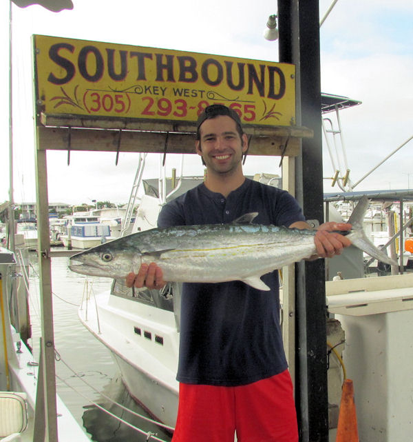 16 lb Cero Mackerel caught in Key West fishing on charter boat Southbound