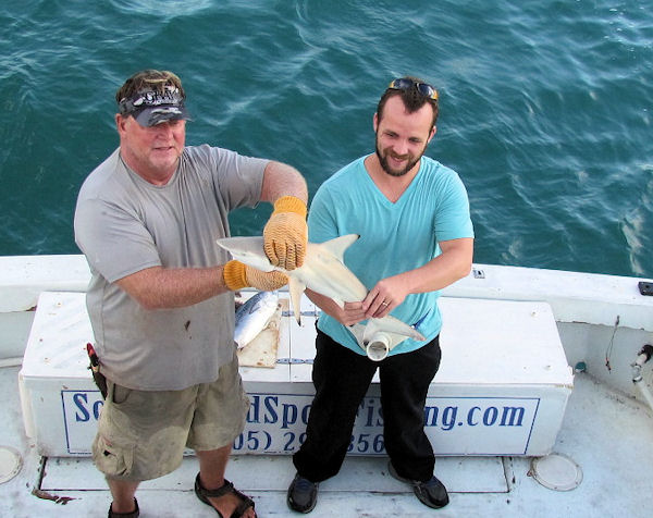 Shark caught and released in Key West fishing on Charte boat Southbound