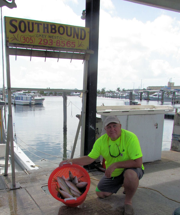 Limit of Delicious snappers caugth in Key West fishing on charter Boat Southbound