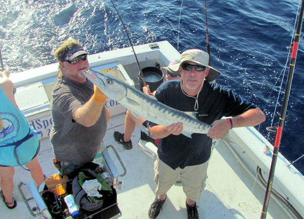 Big Barracuda caugth and released in Key West fishing on charter boat Soutbound