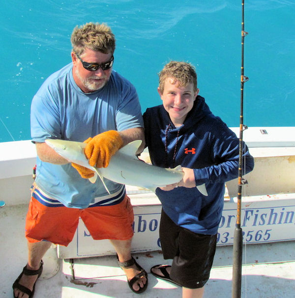 Blacknosed Shark Caught and released in Key West fishing on Charter boat Southbound