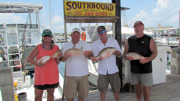 Mutton Snappers caught in Key West fishing on charter boat Southbound from Charter Boat Row, Key West