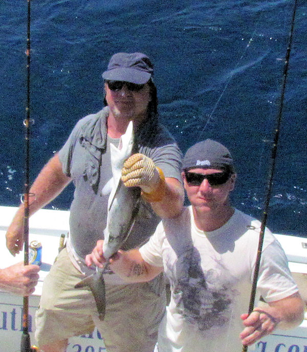 Small Shark caught in Key West fishing on charter boat Southbound from Charter Boat Row