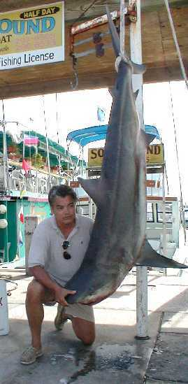 Best Shark caught aboard Southbound in Key West Florida in 2000