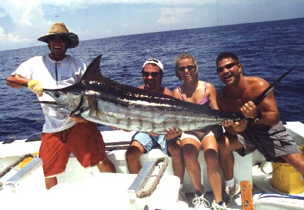 Blue Marlin caught aboard Southbound in Key West Florida in 2001