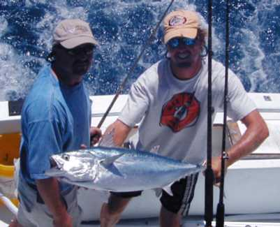 Key West Bonito