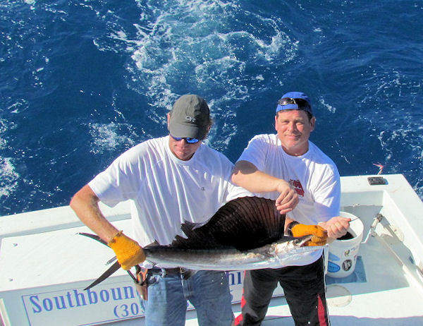 Sail fish caught fishing Key West on charter boat Southbound from Charter Boat Row Key West