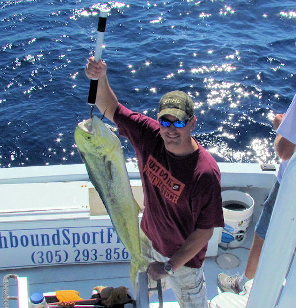 Dolphin caught fishing Key West on charter boat Southbound from Charter Boat Row Key West