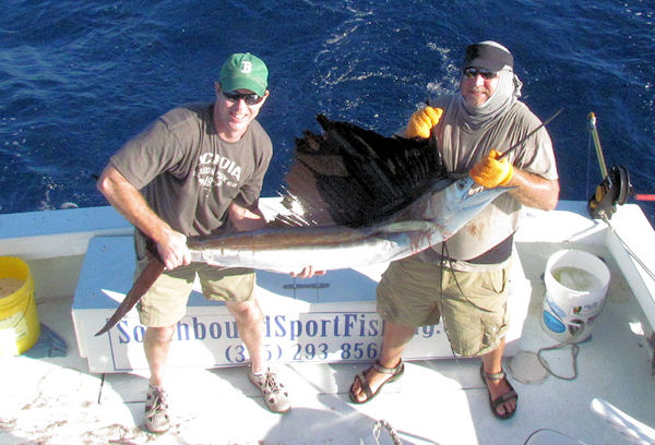 Sailfish caught and released fishing Key West on charter boat Southbound from Charter Boat Row Key West