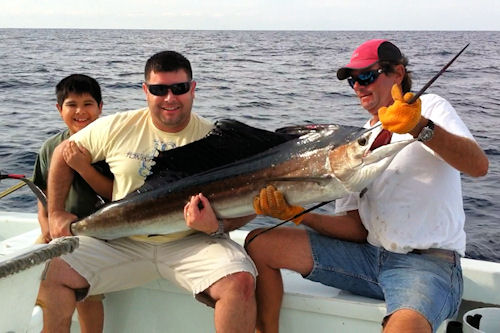 Sailfish caught in Key West fishing on charter boat Southbound from Charter Boat Row, Key West