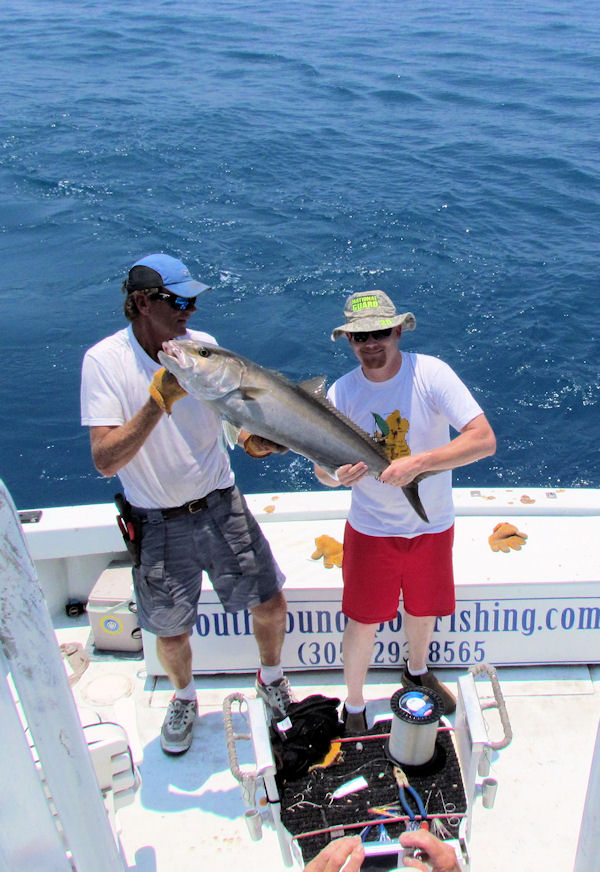 Amberjack caught in Key West fishing on charter boat Southbound from Charter Boat Row, Key West