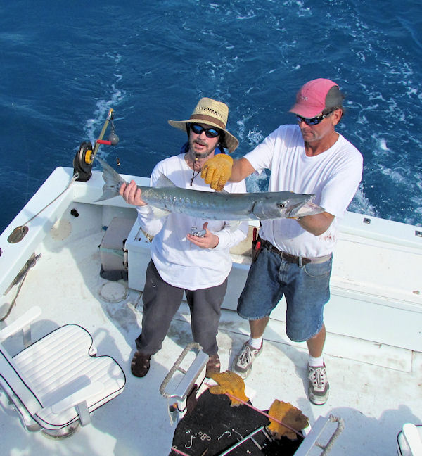 Barracuda caugth in Key West fishing on charter boat Southbound from Charter Boat Row Key West