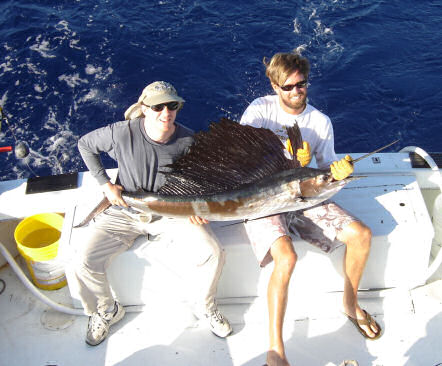 Sailfish caught aboard Southbound in Key West Florida in 2005