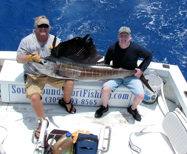 Sailfish caught and released in Key West fishing on charter boat Southbound from Charter Boat Row, Key West