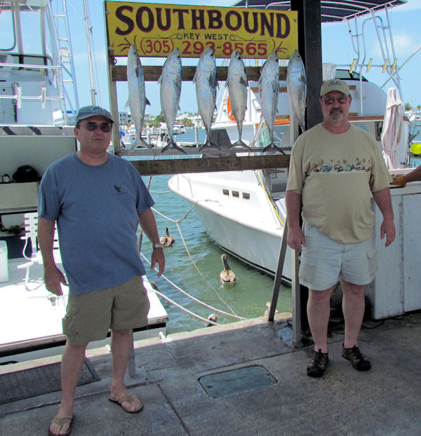 Bonitos caught in Key West fishing on charter boat Southbound from Charter Boat Row, Key West