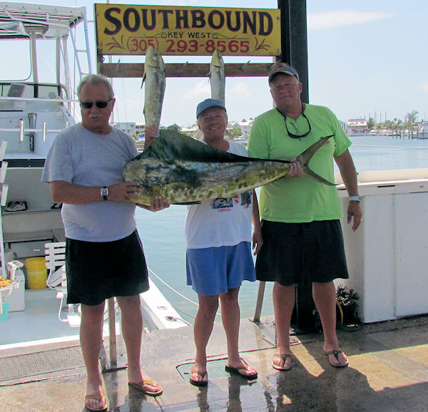29lb dolphin caught in Key West fishing on charter boat Southbound from Charter Boat Row, Key West