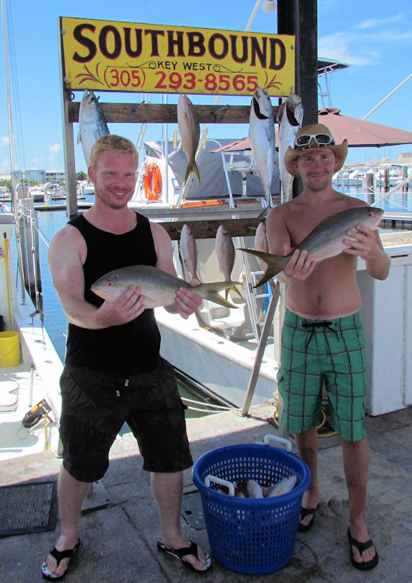 Big Yellow tails caught in Key West fishing on charter boat Southbound from Charter Boat Row