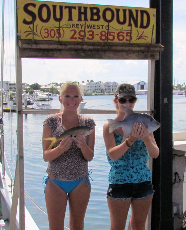 Fish caught in Key West fishing on charter boat Southbound from Charter Boat Row