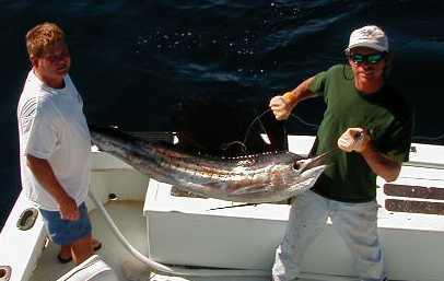 sailfish steve.jpg (13201 bytes)