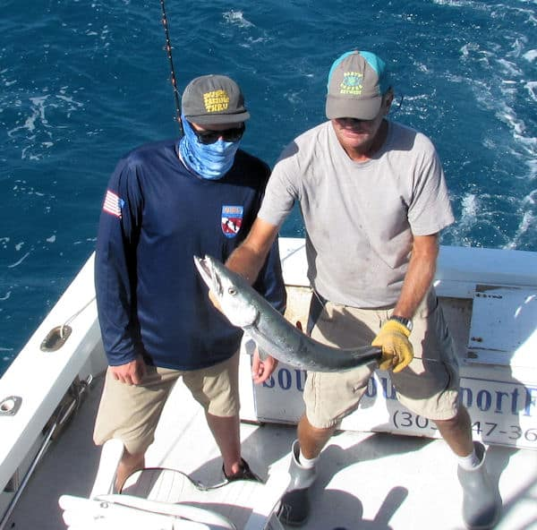 Big Barracuda caught and released in Key West on charter fishing trip with Southbound Sportfishing