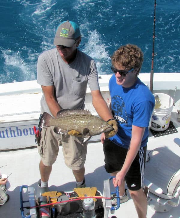 Black Grouper released in Key West