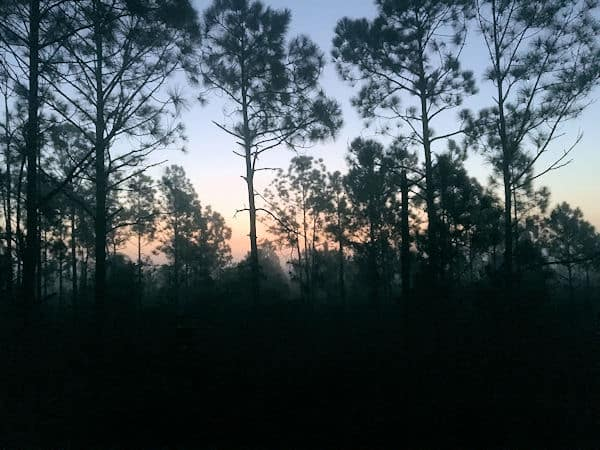 1st light at hunting camp.